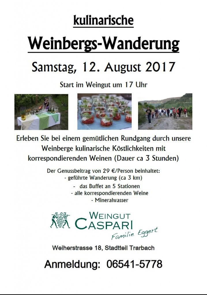 Plakat Wanderung August 2017