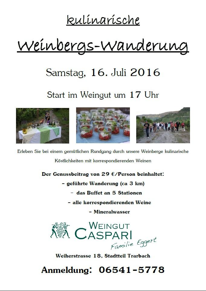 Weinbergswanderung Juli 2016